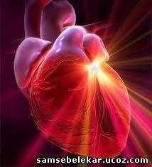 Рубцы на сердце лечить народными средствами